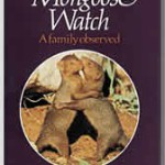 Mongoose Watch