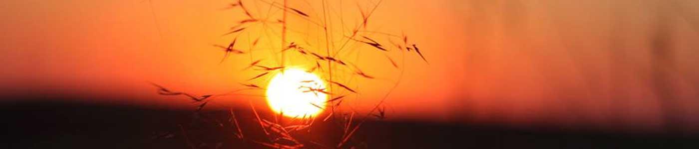 Kalahari Sunset   Kalahari Trails